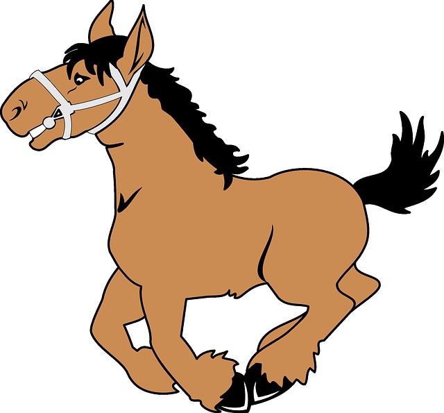 Konj Jack