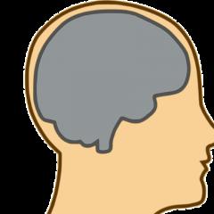 Ljudski mozak fora činjenice