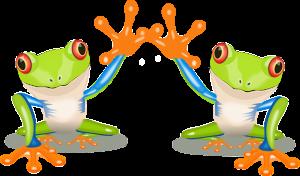 Kornjača Mia